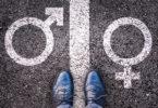 transgênero