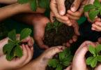 Significado de Sustentável