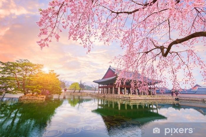 significado da flor de cerejeira